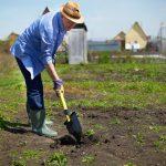 Uprawianie ogrodu jako dodatkowa aktywność fizyczna